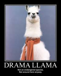 Drama Llama not endangered. Not anywhere in the vicinity of Raincoaster.